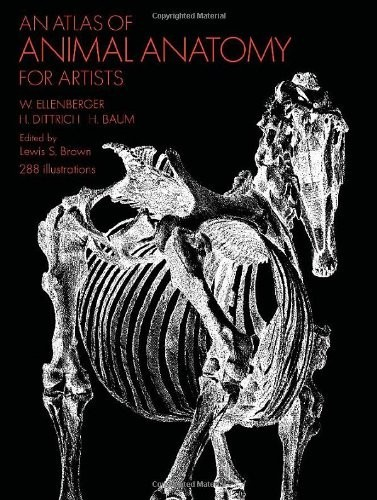 An Atlas of Animal Anatomy for Artists по 547.00 руб от изд. Dover